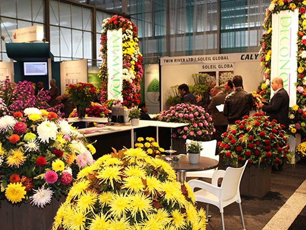Bezoek Armada Op Royal FloraHolland Trade Fair In Aalsmeer